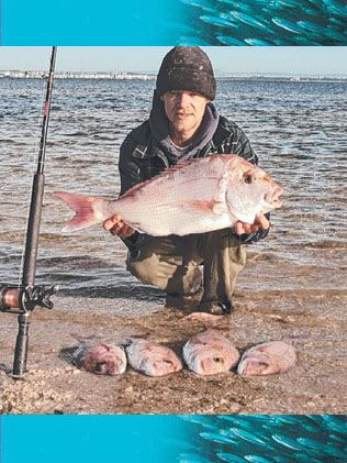 Snapper Fishing Melbourne