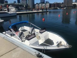 bow rider speed boat hire